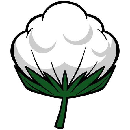boll: Cotton Blossom Illustration