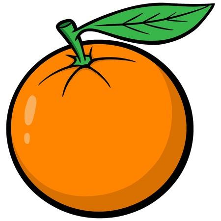 florida citrus: Florida Orange Illustration