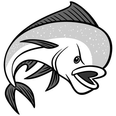 saltwater: Mahi Mahi illustration