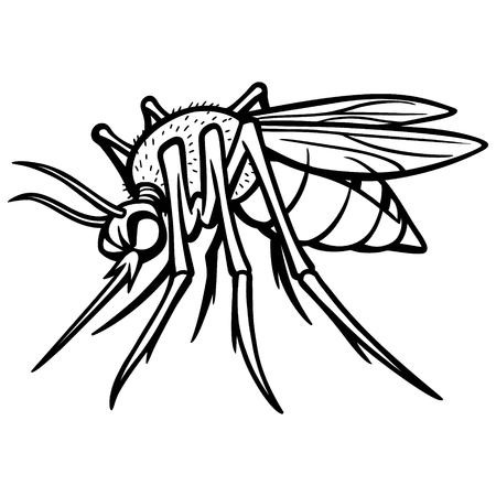 nile: Mosquito Illustration Illustration