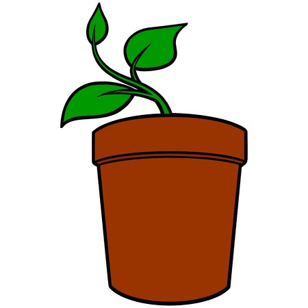 potted plant: Potted Plant