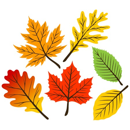 Retro Leaf Collection