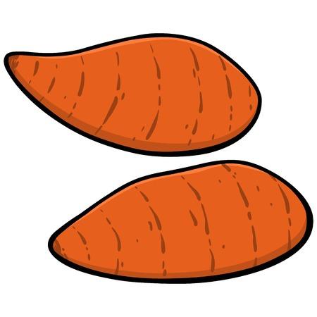 Zoete aardappelen Stockfoto - 57935269