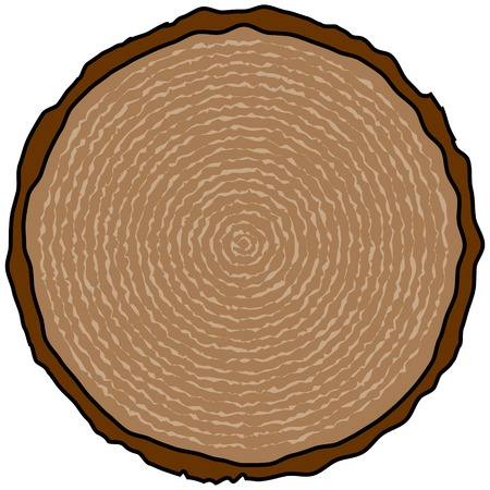 나무 반지 일러스트
