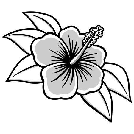 Hibiscus Illustration Ilustração
