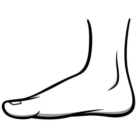 Inside Foot Illustration