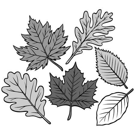 Spring Leaf Collection Illustration