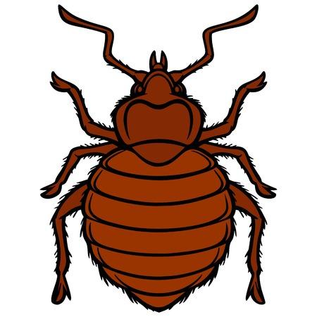 Bed Bug Graphic Ilustração
