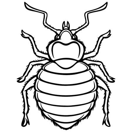 Bed Bug Graphic Illustration Illustration