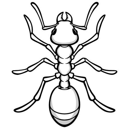 Ant Illustration Иллюстрация