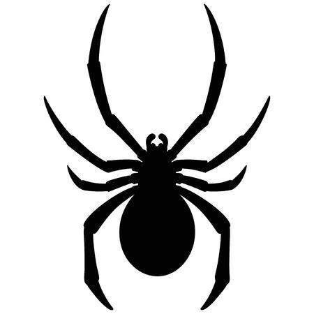 Black Widow Silhouette Banque d'images - 74122223