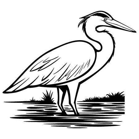 Heron Illustration  イラスト・ベクター素材