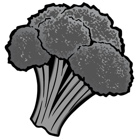 Broccoli Illustration