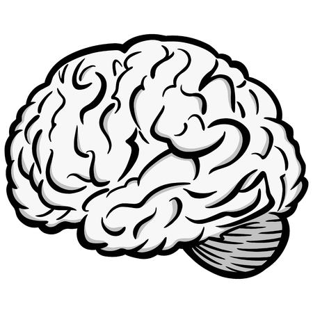 Brain graphic illustration - A vector cartoon illustration of a brain graphic.