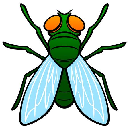 Fly Top View - A vector cartoon illustration of a top view of a Fly. Illustration