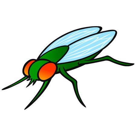 Housefly - A vector cartoon illustration of a common Housefly.