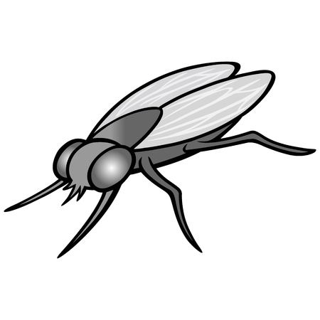 Black and White Housefly - A vector cartoon illustration of a common Housefly. Illustration