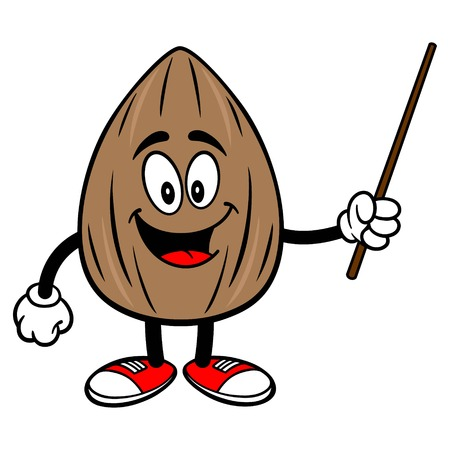 Almond Mascot with a Pointer - A vector cartoon illustration of a Almond mascot with a Pointer.