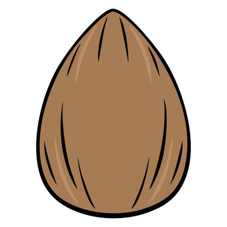 Almond - A vector cartoon illustration of a fresh Almond.