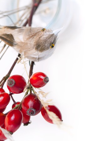 Bouquet of autumn berries and little bird Stock Photo - 8232052
