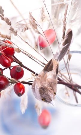 Bouquet of autumn berries and little bird Stock Photo - 8232085