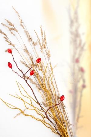 Decorative bouquet of autumn berries photo
