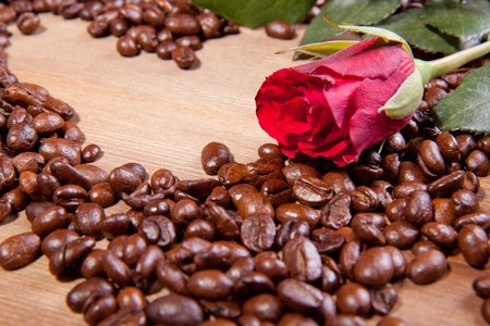 Beautiful red rose on the fragrant fried coffee beans as a heart Stock Photo - 8791471