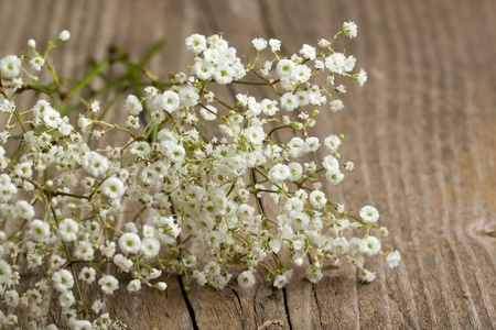 bunch of Gypsophila (Babys-breath flowers) on old wooden table