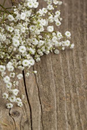 mucchio di Gypsophila (Baby's respiro fiori) sul vecchio tavolo di legno Archivio Fotografico