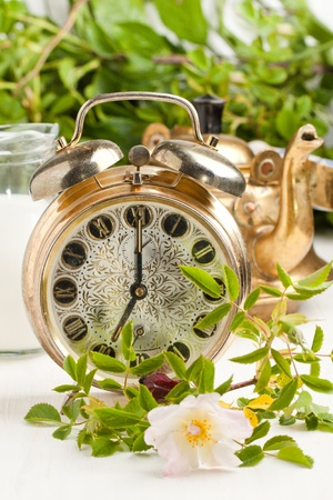 Old alarm-clock, teapot and jug of milk with wild rose on white table photo