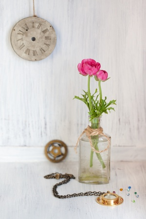 buttercup flower: Tow pink ranunculus in old vintage bottle and old clock
