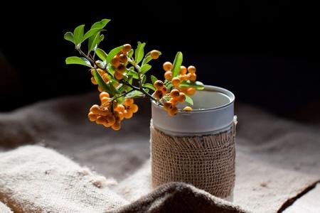 Bouquet of autumn orange berries in sunshine photo