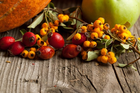 Bunch of autumn red and orange berries on old wooden table as background