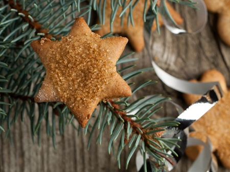 Homemade sugar cookie as star on christmas tree photo