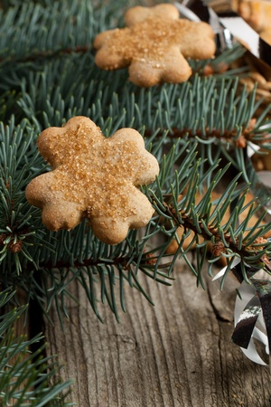 Homemade sugar cookies on christmas tree photo