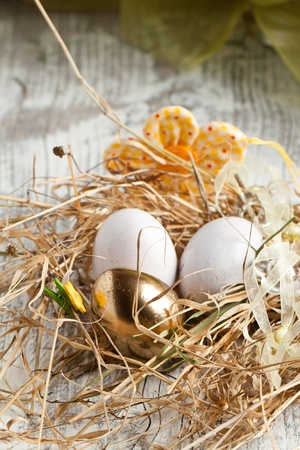 White and golden easter egg in nest photo