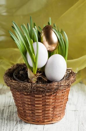 White and golden easter eggs in fresh spring grass