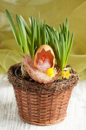 Toy baby chicken with eggshell in nest in pot with spring grass photo