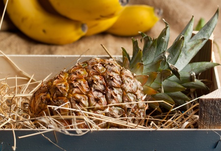 Tropical fruit of pineapple in wooden box photo