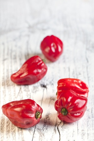 tex: Red chili habanero peppers on white wooden table