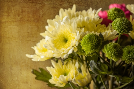 Bouquet of yellow, green and pink flowers on old textured background photo