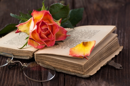 wet orange rose on old brown wooden table with old bible book and vintage glasses photo