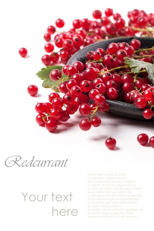 Heap of fresh currant over white with sample text