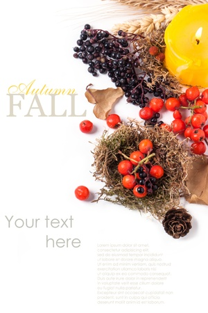 Autumn card with autumn berries and yellow burning candle over white with sample text
