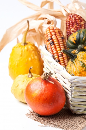 Autumn mini pumpkins and corn in basket over white photo