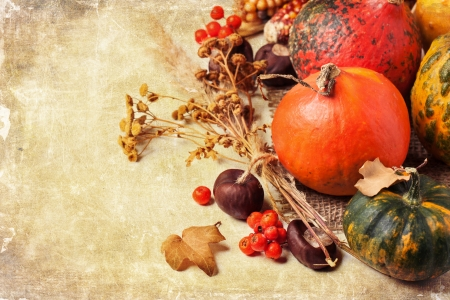 Autumn mini pumpkins, berries, chestnuts and dry flowers over old textuded background