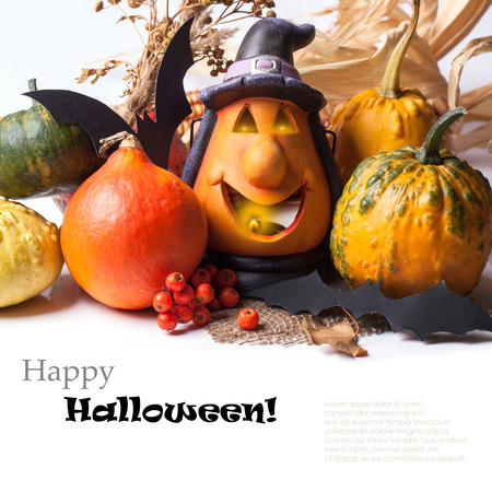 Halloween lantern with autumn berries and pumpkins over white with sample text photo