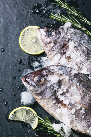 Top view on tow raw dorado fish with rosemary, lime and ice over black stone background. photo