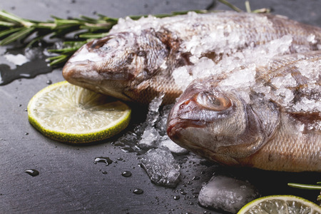 Close up of raw fish bream with rosemary and lime under ice over black stone background.  photo