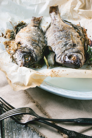 Tow grilled dorado fish with rosemary served on baking paper.  photo